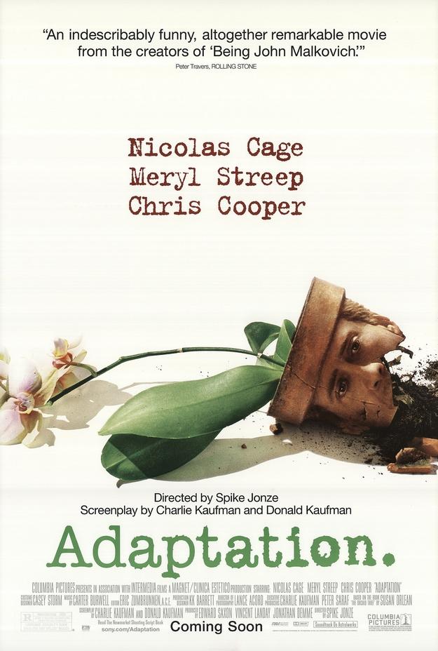 Adaptation - affiche